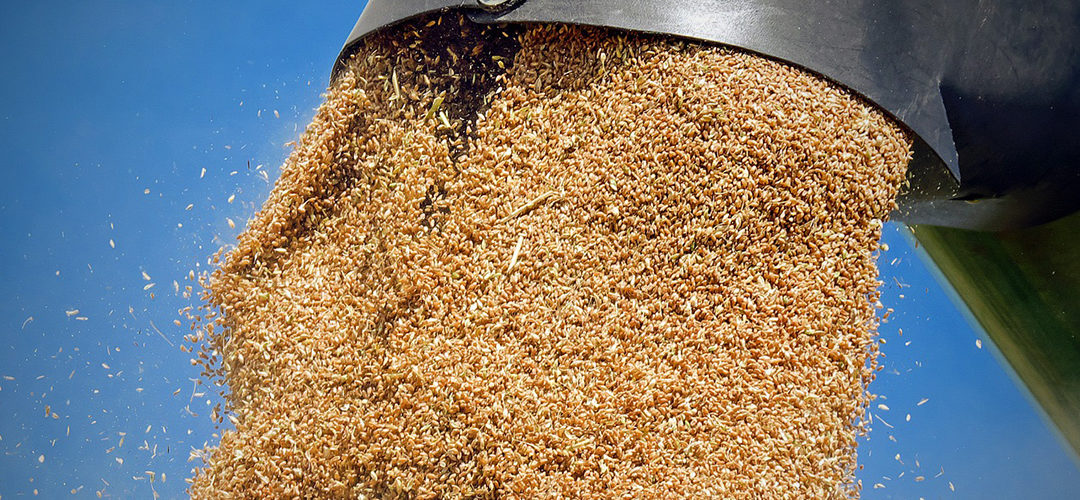 Watne appointed to federal grain inspection advisory committee